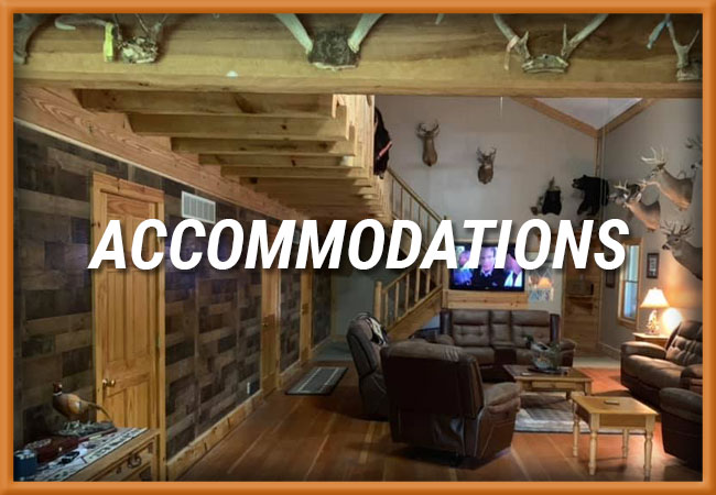 B&D Outfitters, LLC Accommodations