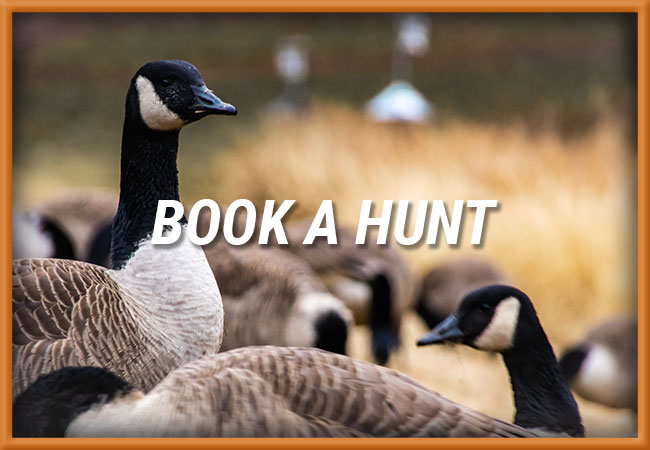 Book A Hunt With B&D Outfitters, LLC